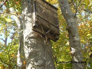 Nature Center Bat House