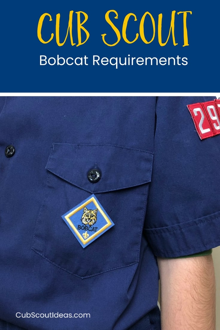 Cub Scout Bobcat Requirements