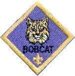 Bobcat requirements