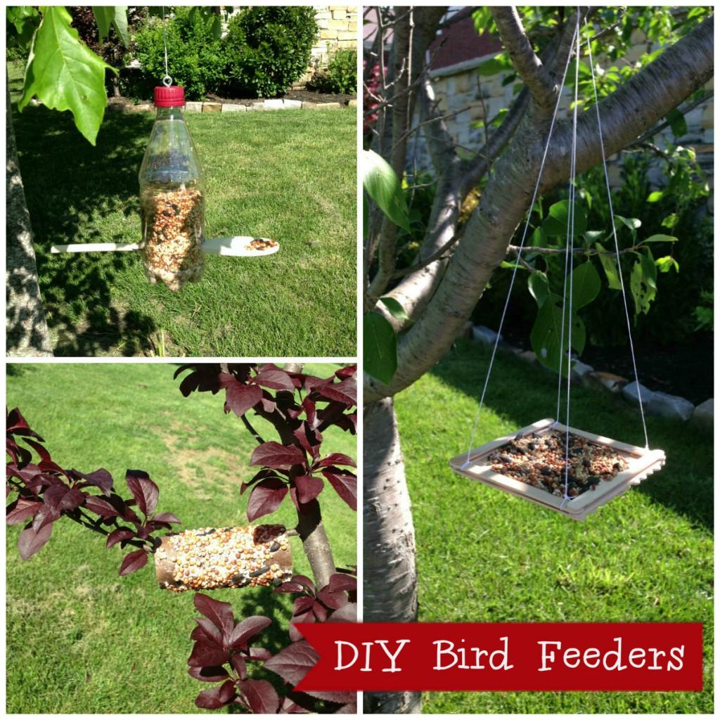 bird feeder collage4