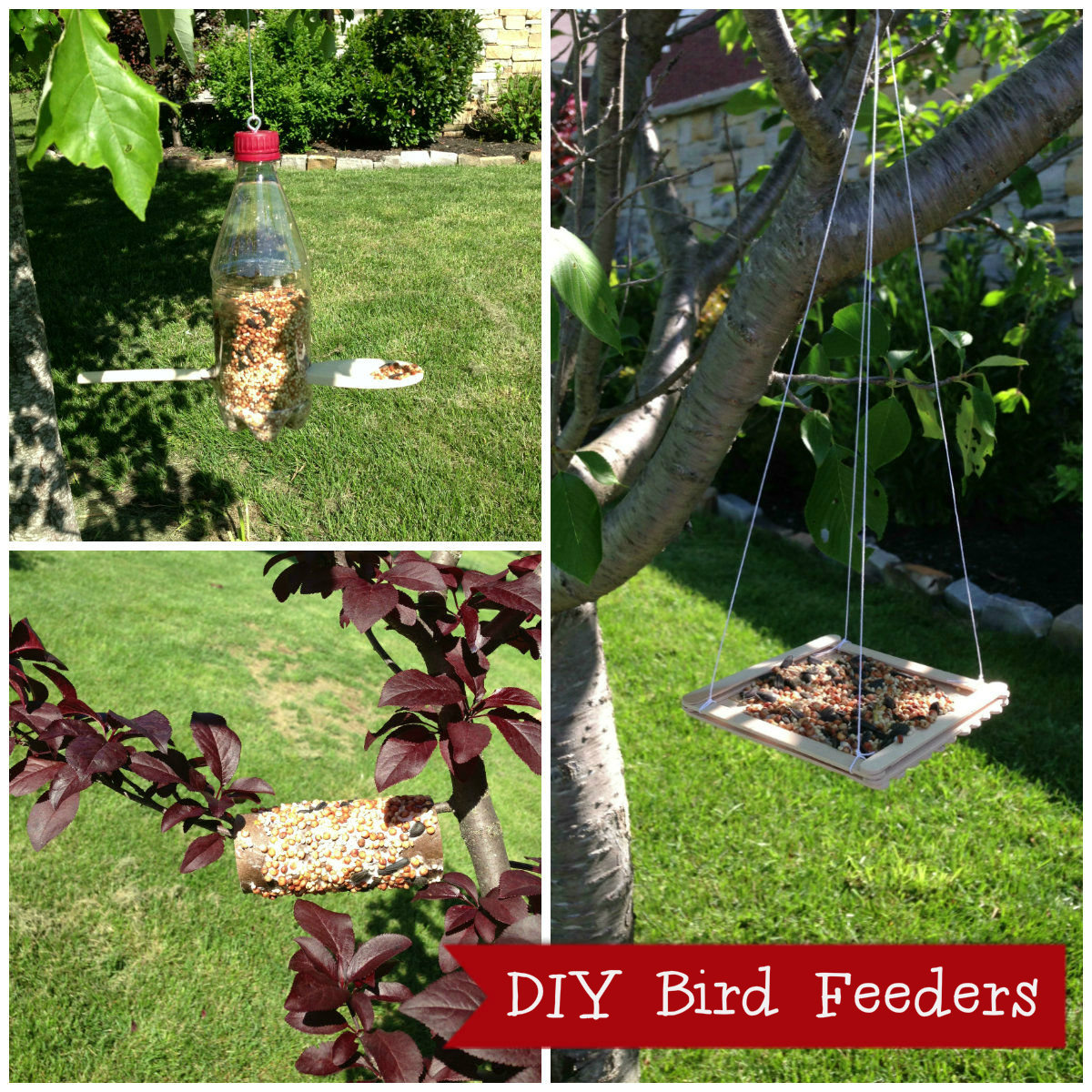 Cub Scouts: Bird Feeders for Kids to Make