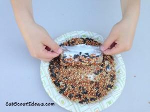 Roll Bird Feeder in Seeds