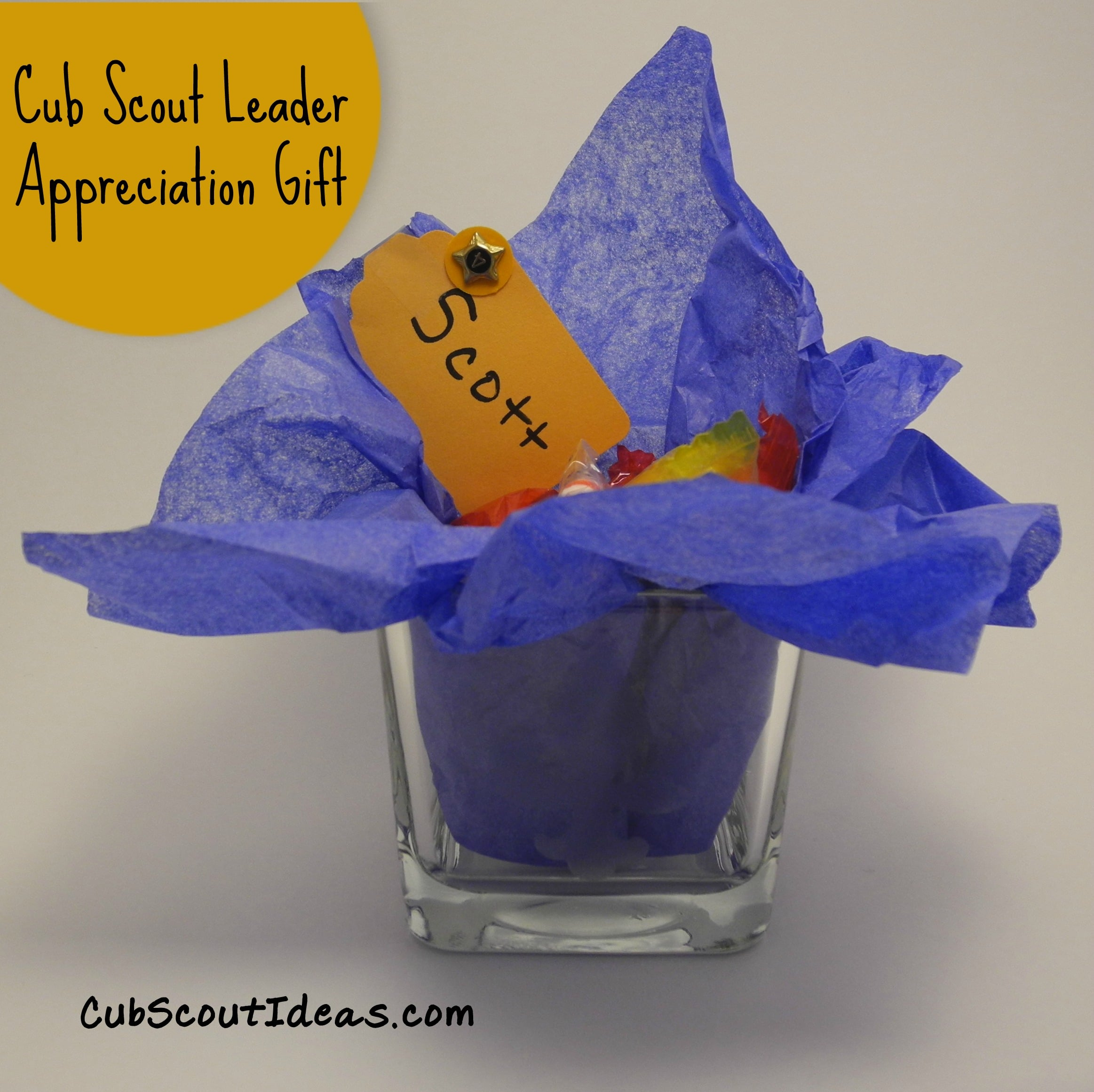cub scout leader appreciation gift