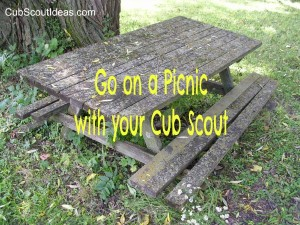 Picnic with your Cub Scout