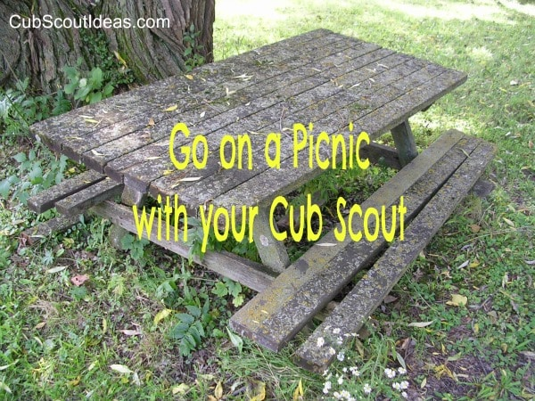 cub scout going on a picnic
