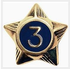 Cub Scout Service Stars