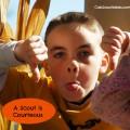 cub scout a scout is courteous