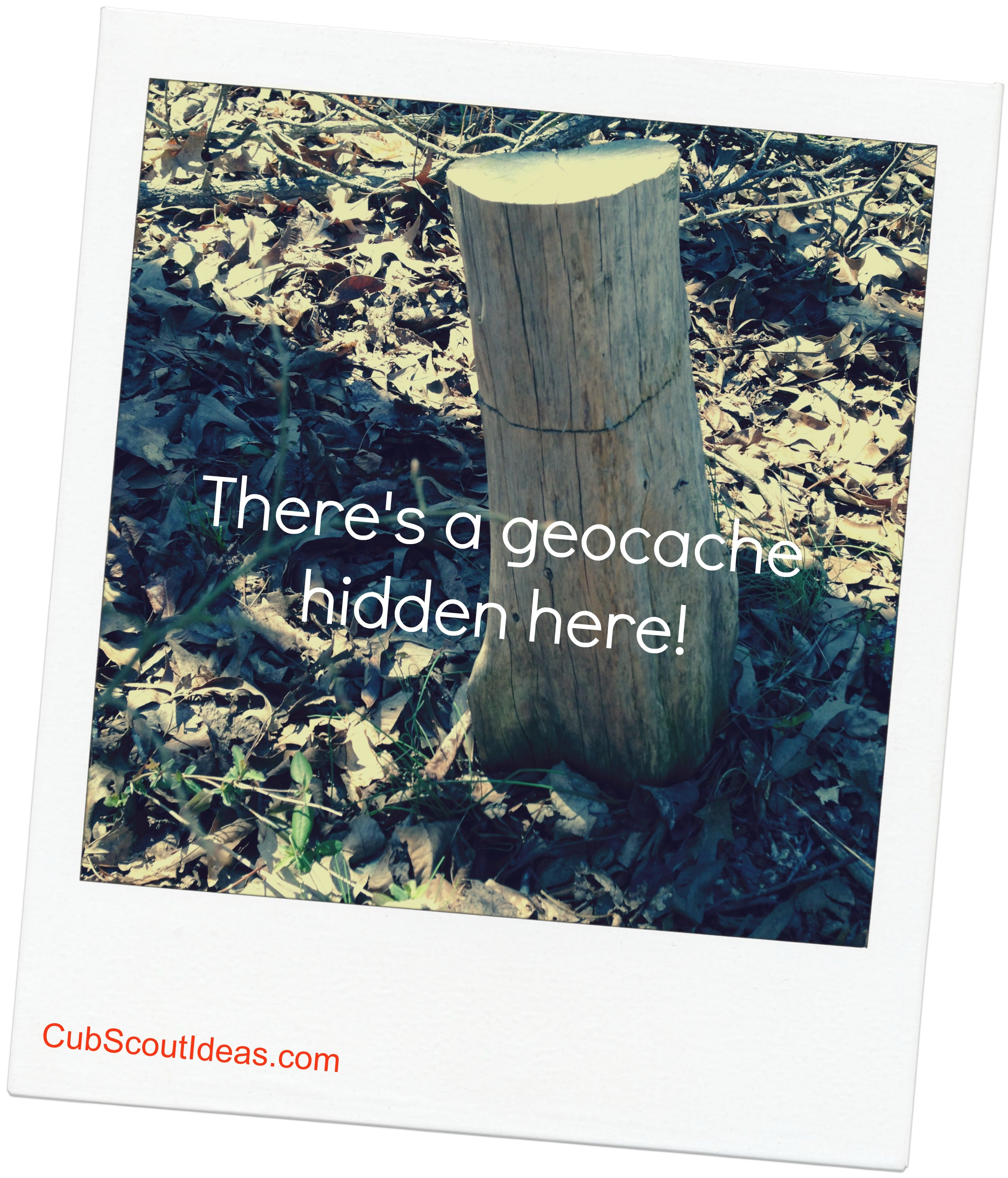 Cub Scout Outdoor Activity:  How to Geocache