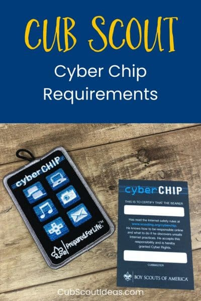 photo regarding Bsa Cyber Chip Green Card Printable known as Cub Scout Cyber Chip Demands for Each and every Rank