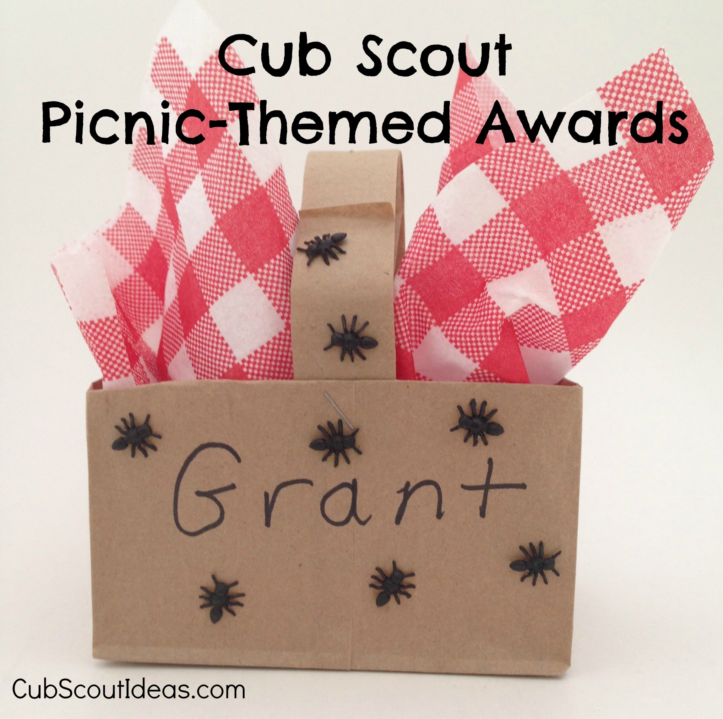 Cub Scout Picnic-Themed Awards