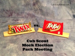 cub scout mock election