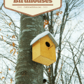 local bird house