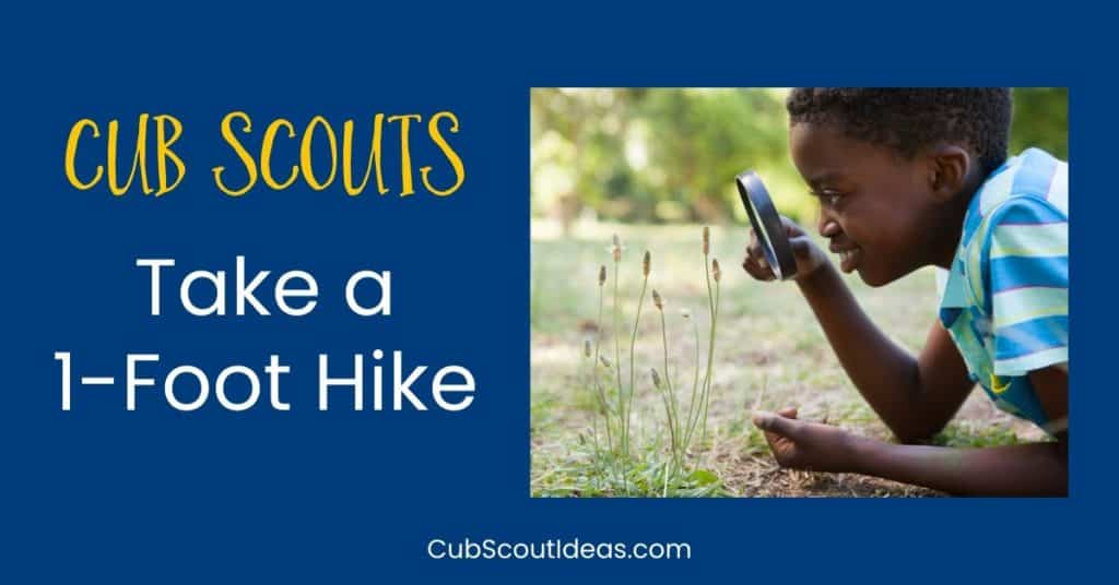 Cub Scouts 1 foot hike