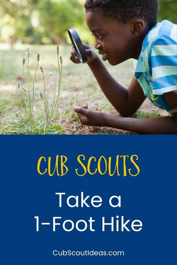 Cub Scouts take 1 foot hike