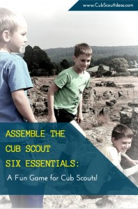 Cub Scout Six Essentials Game