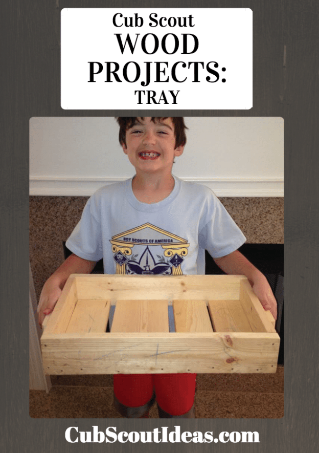 cub scout projects