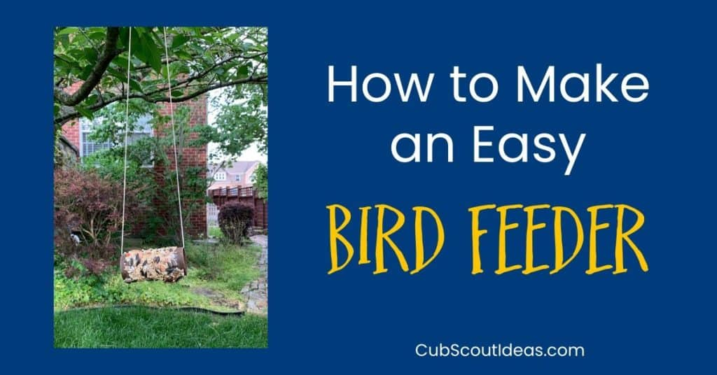 How to Make an Easy Bird Feeder