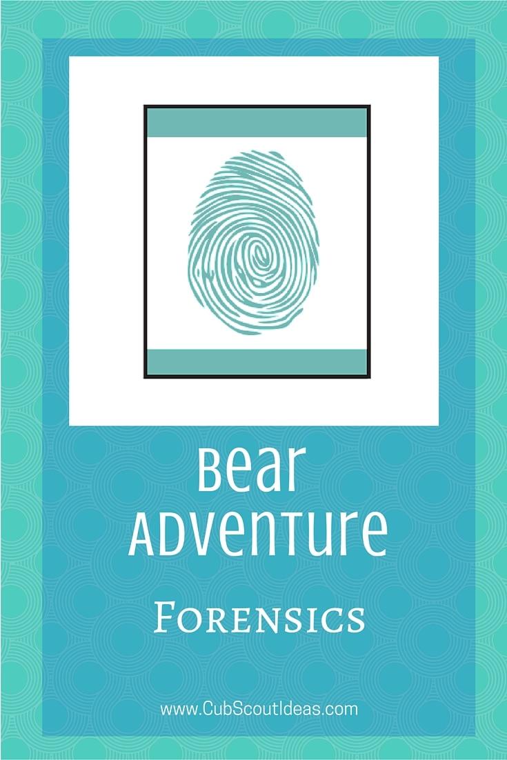 Bear Cub Scout Forensics