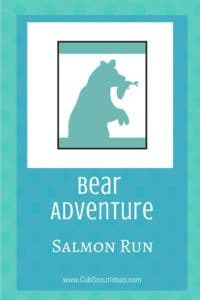 Bear Salmon Run