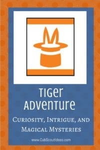Tiger Curiosity Intrigue and Magical Mysteries