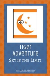Tiger Sky is the Limit