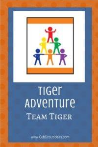 Tiger Team Tiger