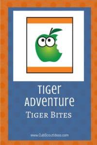 Tiger Tiger Bites