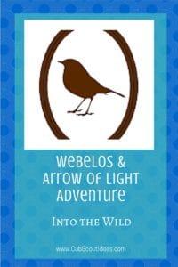 Webelos_AoL Into the Wild