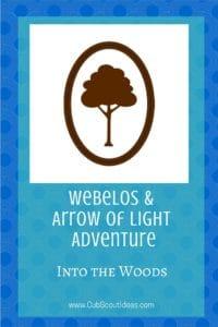 Webelos Arrow of Light Into the Woods