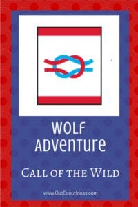 Wolf Call of the Wild