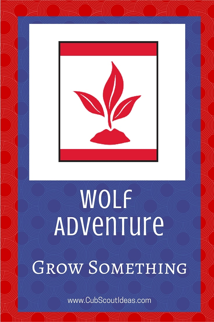 Cub Scout Wolf Grow Something