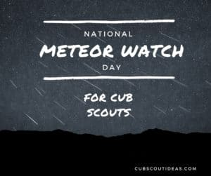 cub scout activities while watching for meteors