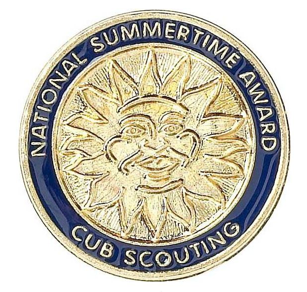 summertime pack award pin