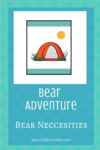 Bear Bear Necessities