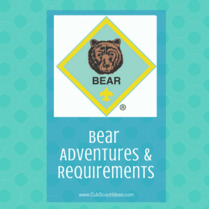 bear-requirements-adventures-square