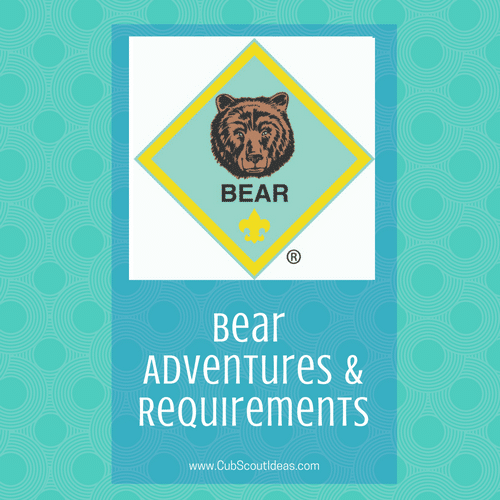 cub scout bear requirements adventures