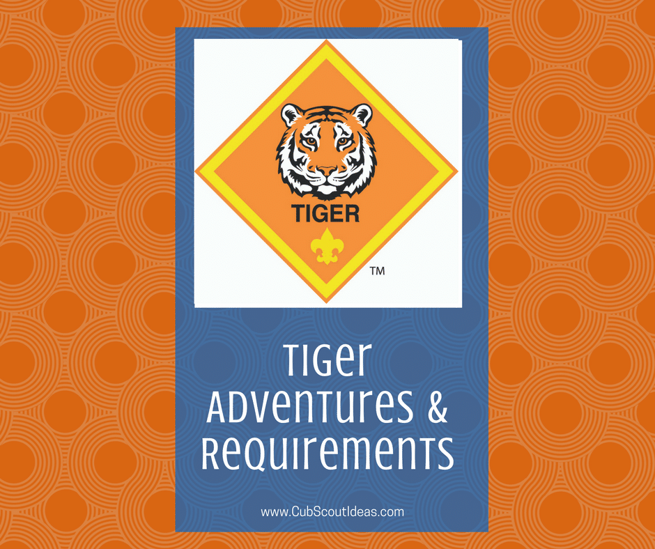 Tiger Adventures & Requirements square