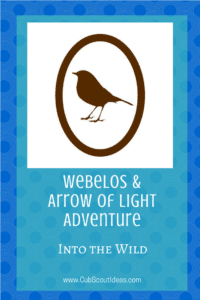 Webelos AoL Into the Wild