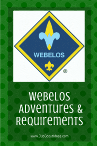 Cub Scout Webelos Requirements