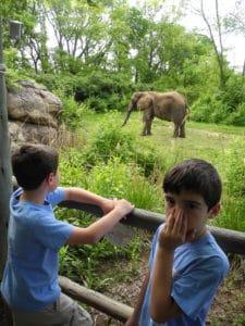 cub scout zoo trip