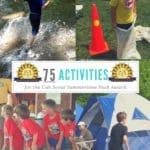 Summertime Pack Award Activities
