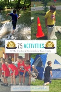 Summertime Pack Award Activities