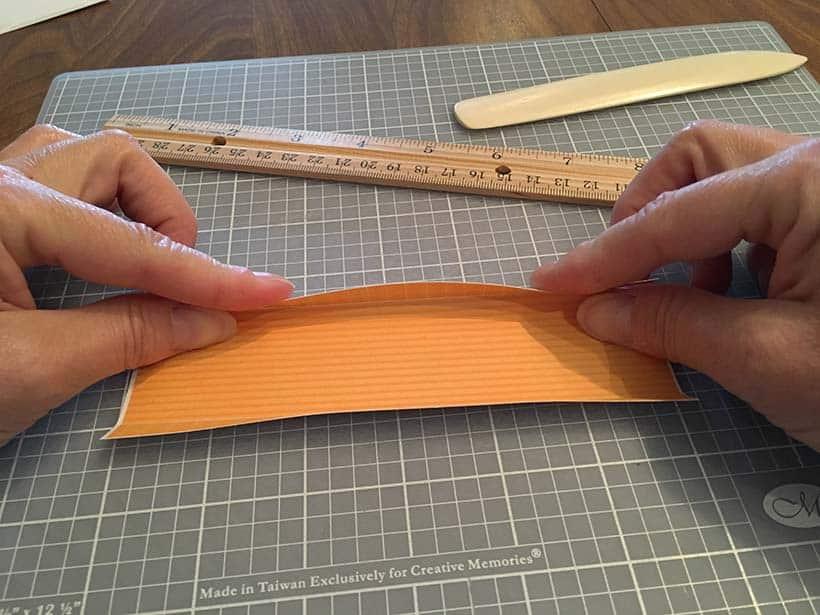 fold trays