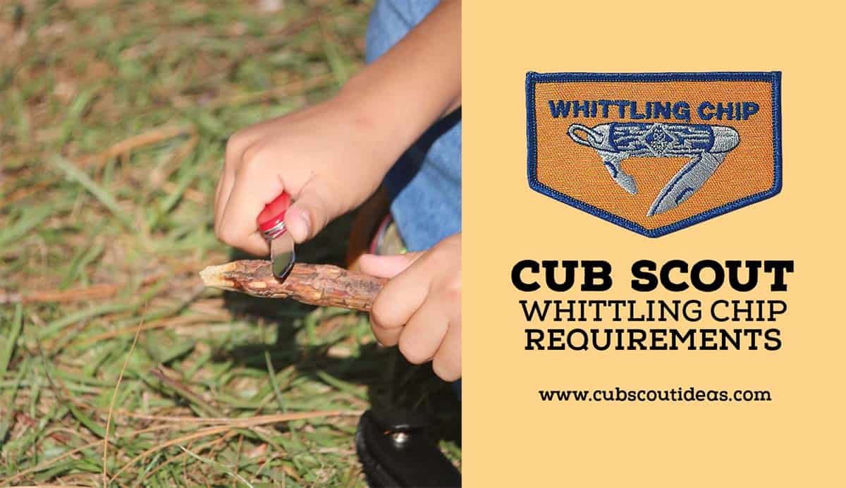 cub scout whittling chip