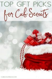 Top gift picks for cub scouts