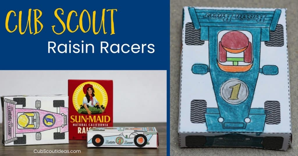 Cub Scout Raisin Racers for Pinewood Derby