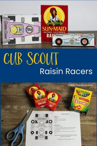 Cub Scout Raisin Racers