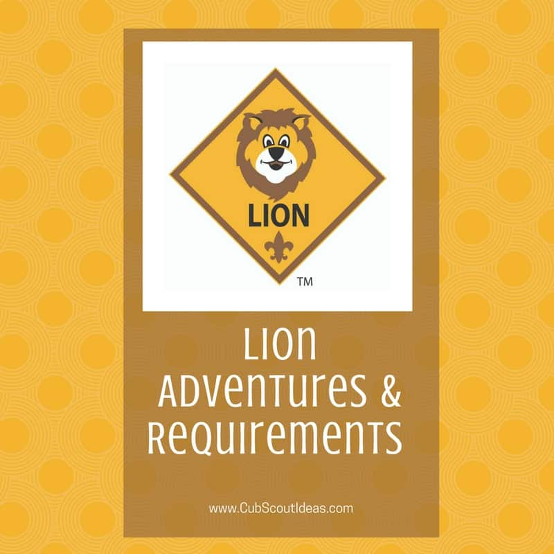 Lion Requirements and adventures