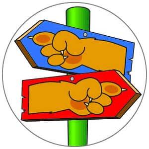 Lion Cub Scout Adventure Pick My Path