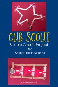 Cub Scout circuit project